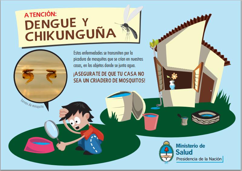 Fiebre chikungunya y dengue ministerio de salud p blica for Como eliminar los mosquitos del jardin