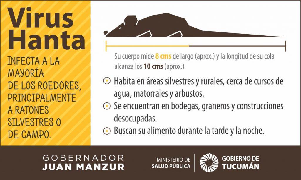 Tucumán no registra casos de hantavirus