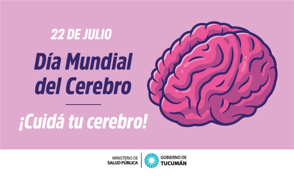 Día del Cerebro: Cómo cuidar la Salud Cerebral – Ministerio de Salud  Pública de Tucumán